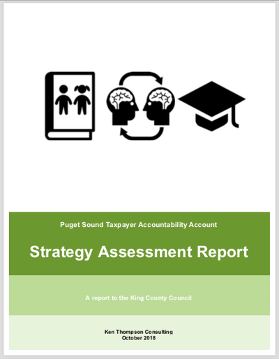 Strategy Assessment Report link